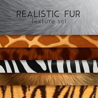Ensemble de texture horizontale en fourrure