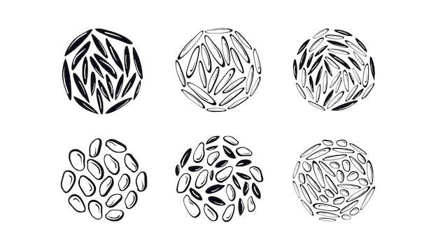 Ensemble de texture de riz différents types de céréales sushi blanc détaillé et graines noires sauvages
