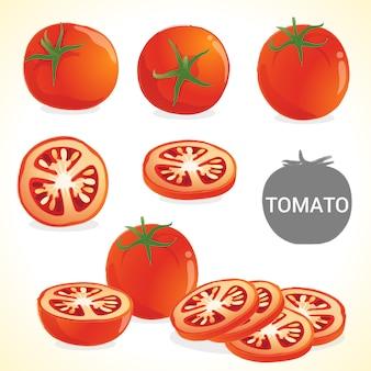 Ensemble de tomates au format vectoriel de différents styles