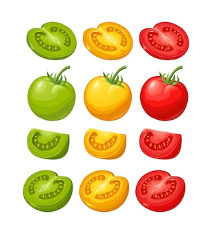 Ensemble de tomates dessinées à la main isolés sur fond blanc. branche, entière, moitié et tranche. illustration de couleur vecteur plat. élément de design dessiné à la main pour étiquette et affiche
