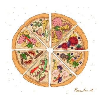 Ensemble de tranches de différents types de pizza avec divers ingrédients isolés