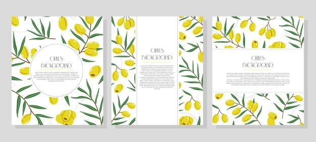Ensemble de trois bannières verticales à la mode minimalistes prêtes à l'emploi avec des olives et place pour le texte