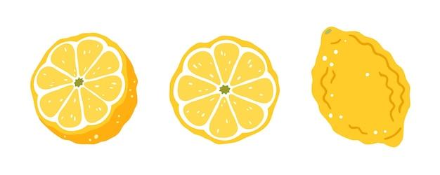 Ensemble de trois citrons sur fond blanc. illustration vectorielle