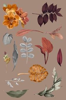 Ensemble de vecteur de collection de feuilles tropicales