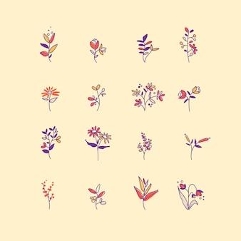 Ensemble de vecteur d'éléments botaniques dessinés à la main