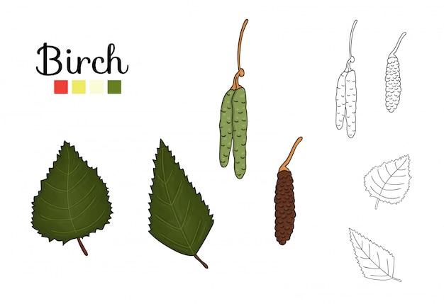 Ensemble de vecteur d'éléments de bouleau isolé. illustration botanique de feuille de bouleau, brunch, fleurs, fruits, ament. clipart noir et blanc.