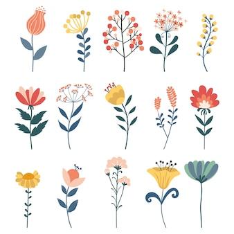 Ensemble de vecteur d'éléments floraux doodle. herbes, ensemble botanique de vecteur dessiné à la main.