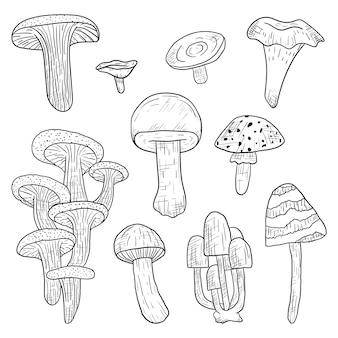 Ensemble de vecteur isolé doodle forêt champignons comestibles et vénéneux dans le style d'art en ligne.