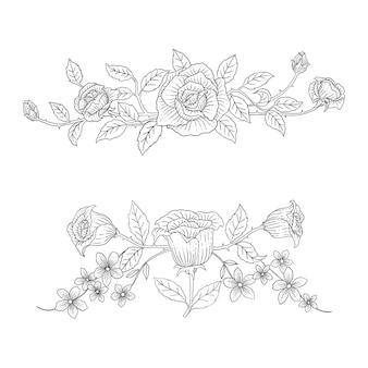 Ensemble de vecteur ornemental d'éléments botaniques dessinés à la main