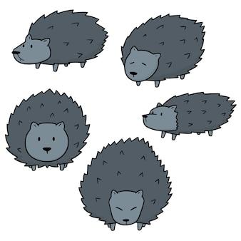 Ensemble de vecteur de porc-épic