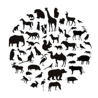 Ensemble de vecteur de silhouettes d'animaux très détaillées avec nom