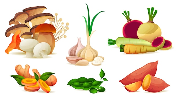 Ensemble de vecteur de vitamines de légumes de la ferme biologique