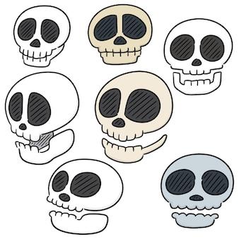Ensemble de vecteurs de dessin animé de crâne