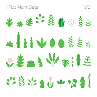 Ensemble de vecteurs de différentes feuilles et plantes dans un style plat