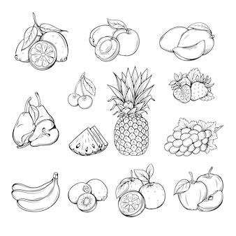 Ensemble de vecteurs de différents fruits dessinés à la main,
