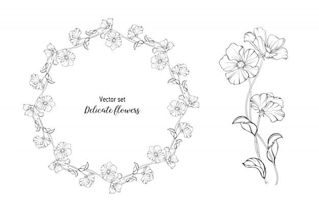 Ensemble de vecteurs. fleurs délicates.