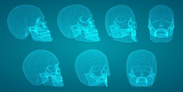 Ensemble vectoriel de crânes humains avec des polygones carrés et triangulaires.
