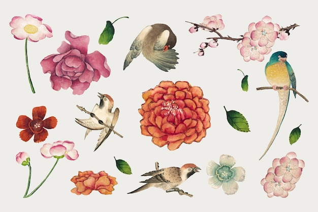 Ensemble vectoriel de fleurs et d'oiseaux chinois, remix d'œuvres d'art de zhang ruoai