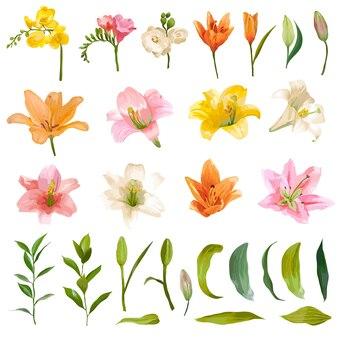 Ensemble vintage de fleurs de lys et roses - style aquarelle
