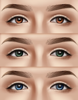 Ensemble de visage féminin aux yeux bleus, verts et bruns