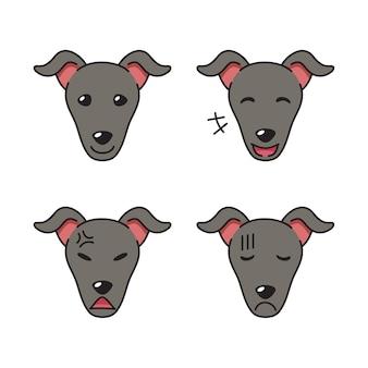 Ensemble de visages de chien lévrier montrant différentes émotions