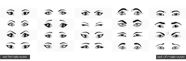 Ensemble de vues féminines et masculines de l'œil.