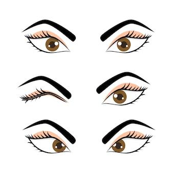 Ensemble de yeux et de sourcils de femme féminine mignonne isolé dans un fond blanc