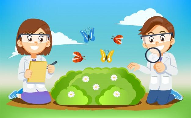 Environnement et biologie science expérimenter le cours pour enfants.