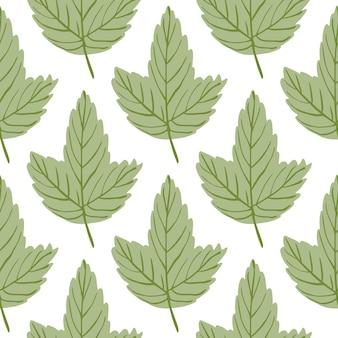 L'érable d'automne laisse un motif botanique sans soudure. toile de fond de feuillage vert nature isolée.