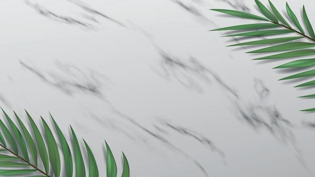 Espace ouvert sous la forme d'une surface en marbre. bannière 3d avec des feuilles de palmier décoratives