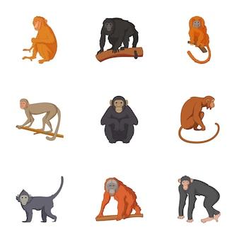 Espèces de chimpanzé icônes définies, style de bande dessinée