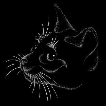 Esquisse de tête de chat
