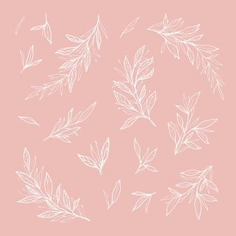 Esquisses romantiques dessinées à la main et contours de feuilles