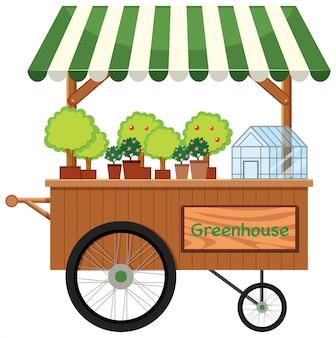 Étal de magasin de chariot de plantes