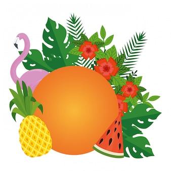Été, feuilles, plantes, fruit, oiseau flamand