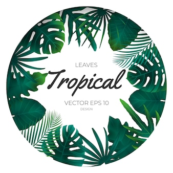 Été tropical feuilles modèle arrière-plan.