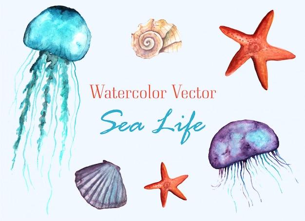 Été vecteur mer vie