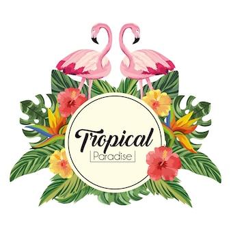 Étiquette avec des flamants roses et des fleurs avec des feuilles