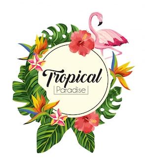 Étiquette avec des fleurs tropicales avec des feuilles exotiques