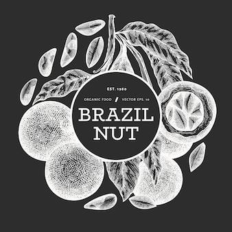 Étiquette de noix brésilienne dessinée à la main