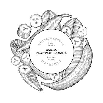Étiquette De Plantain De Style Croquis Dessinés à La Main Vecteur Premium