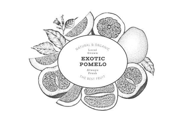 Étiquette De Pomelo De Style Croquis Dessinés à La Main Vecteur Premium