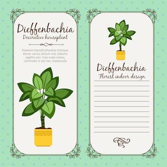 Étiquette vintage avec plante dieffenbachia