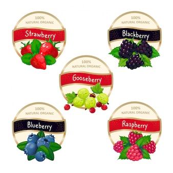 Étiquettes de confiture de baies et de marmelade. modèle d'autocollants fruits fraise myrtille groseille groseille mûre framboise