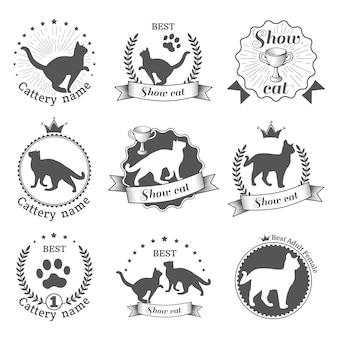 Étiquettes sur le jeu de chats d'exposition