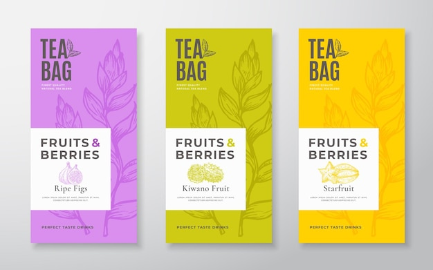 Les étiquettes de thé aux fruits exotiques définissent des mises en page de conception d'emballages vectoriels regroupent des thés dessinés à la main de typographie moderne...