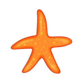 Étoile de mer étoile de mer des caraïbes sur fond blanc - vecteur.