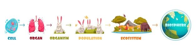 Évolution de la vie