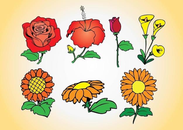 Exotique vecctor collection printemps fleurs