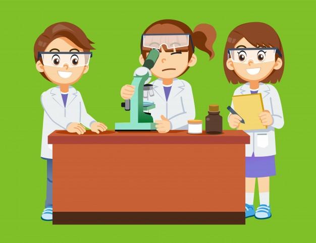 Expérience de la cellule scientifique par l'étudiant.